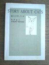 猫だけが知っている.jpg